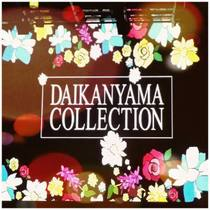daikanyama_collection_nth_.jpg